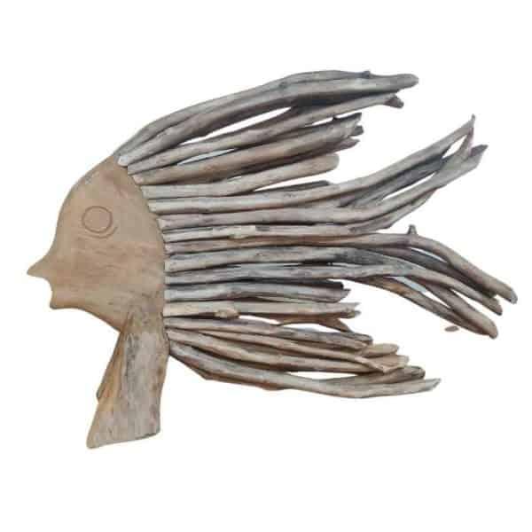 דג מעצי סחף