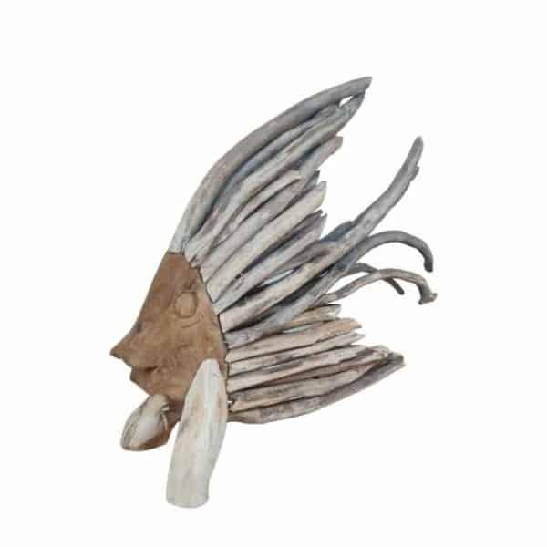 דג בינוני מעצי סחף